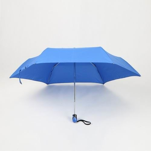 19 Inch Blue Auto Open Close Umbrella With 6 Panels And Blue Plastic Handle